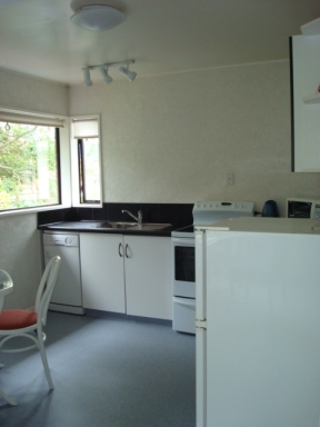 Fully equipped kitchen including dishwasher, oven, fridge with freezer, microwave